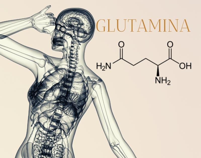 glutamina-lamberts-complementos-canarias